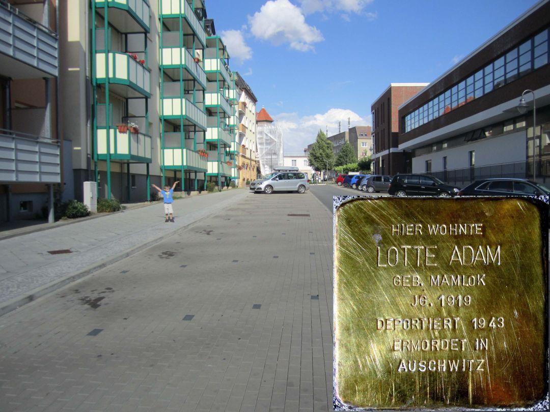 7. Stolperstein für Lotte Adam geb. Mamlock, mittig auf der Nordseite der Scharrnstraße. (Foto: Dr. M. Schulz, 25.07.2015)